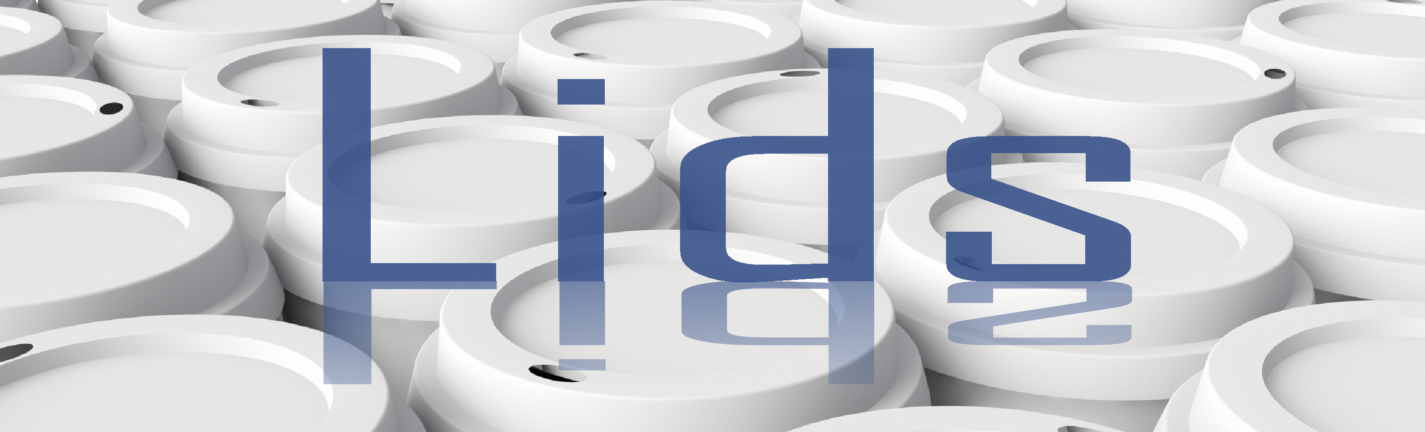 Lids-web graphic